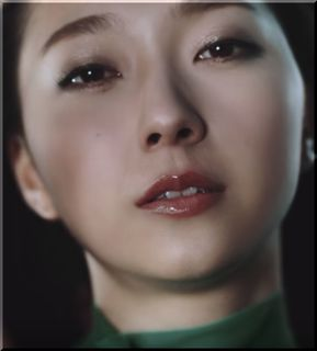 【TIREHOOD(タイヤフッド)CM】空を舞う緑のドレスの美女は誰?