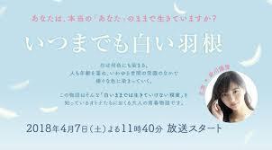 新川優愛:いつまでも白い羽根1.jpg
